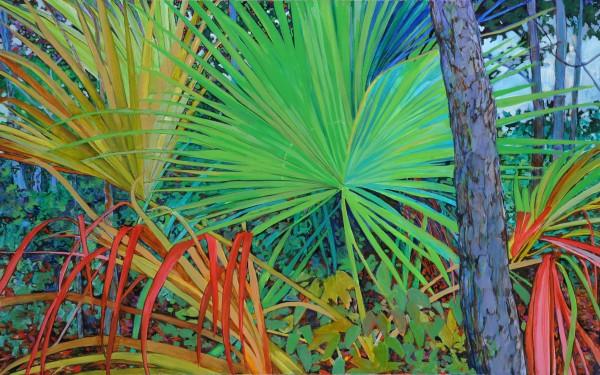 Cumberland Palms